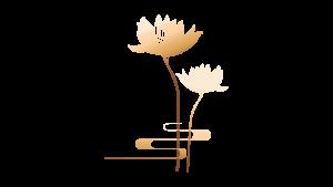 Qua-Trung-Thu-Hoa-Sen